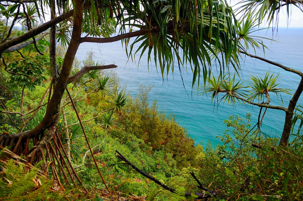 A view from the Kalalau Trail in Kauai.
