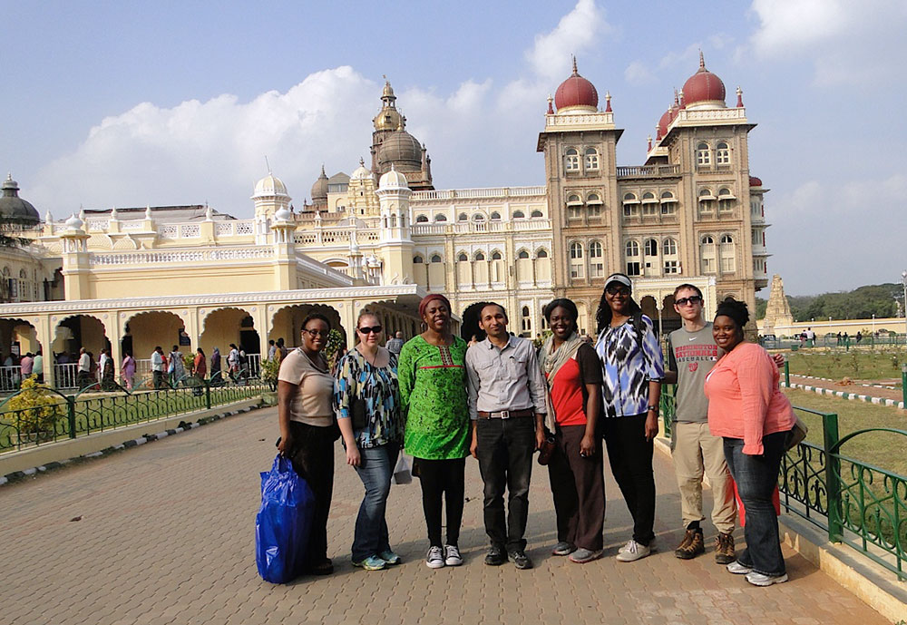 (Left to right) Tosha Pearson-Royston, Eliina Belenkiy, Dr. Angela Coker, Dr. Sachin Jain, Ngozi Williams, Deborah McGhee, Alex Hilert and Meaghan Lakes pictured at the Mysuru Palace in Southern India.